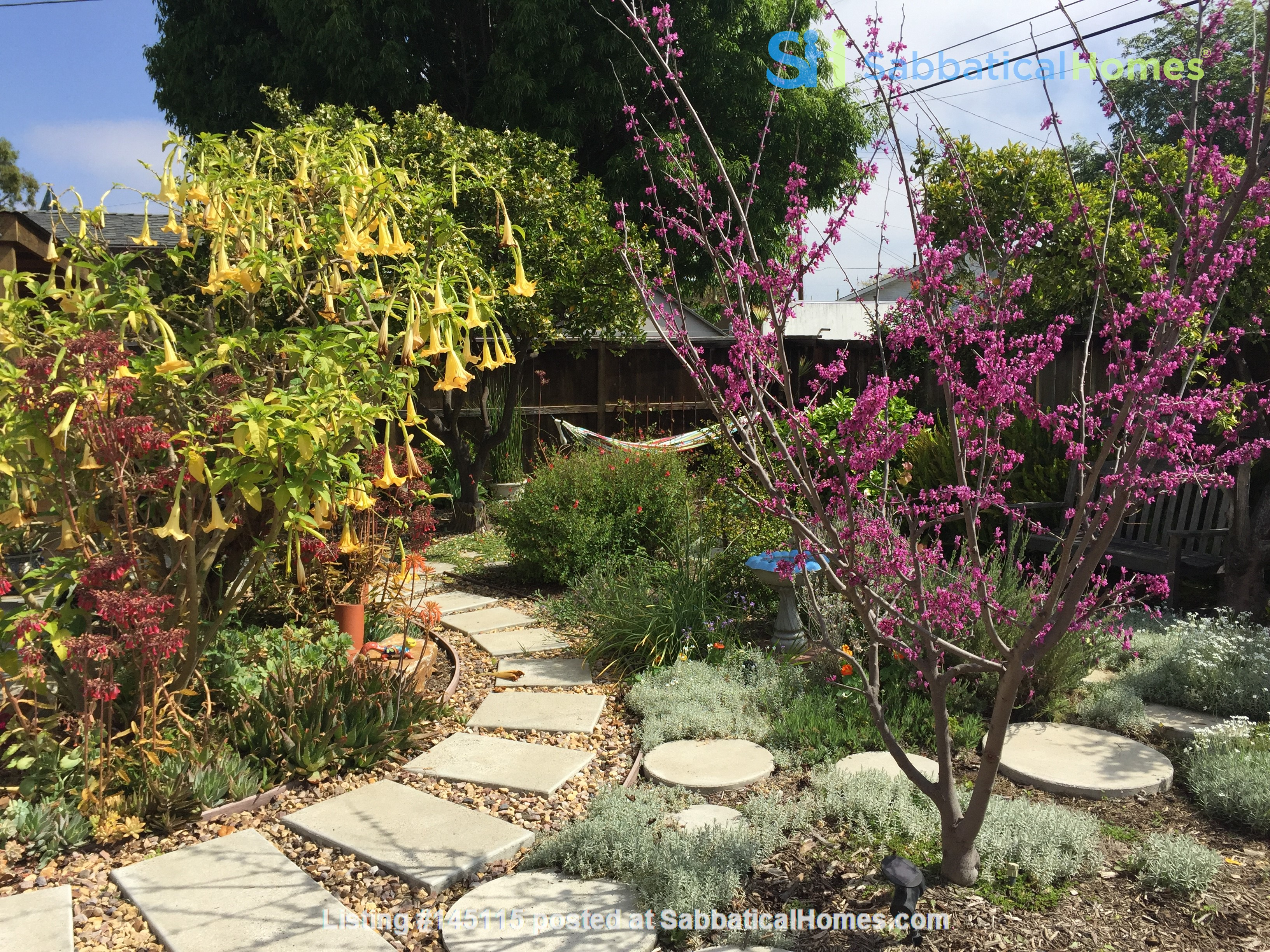 Quiet home for academic or visiting artist Home Rental in San Diego, California, United States 2